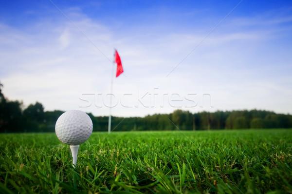 ゴルフ フィールド 緑の草 赤 フラグ 空 ストックフォト © photocreo