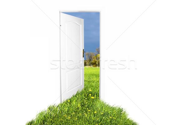 Kapı yeni dünya kolay düzenlenebilir görüntü Stok fotoğraf © photocreo