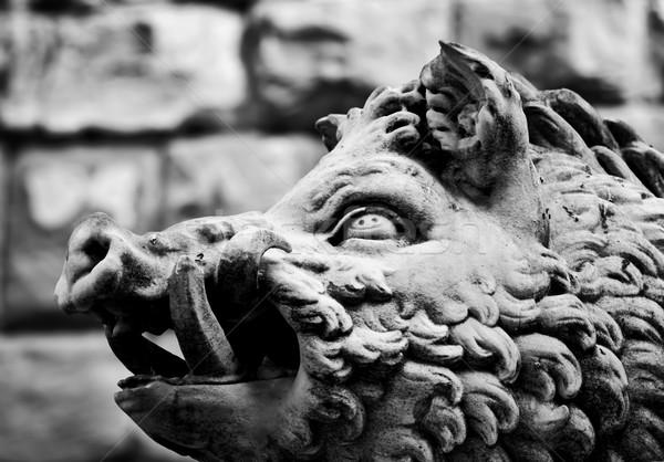 Oude stijl sculptuur wild mannetjesvarken florence Stockfoto © photocreo