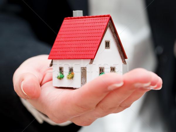 Pequeno mãos negócio Foto stock © photocreo