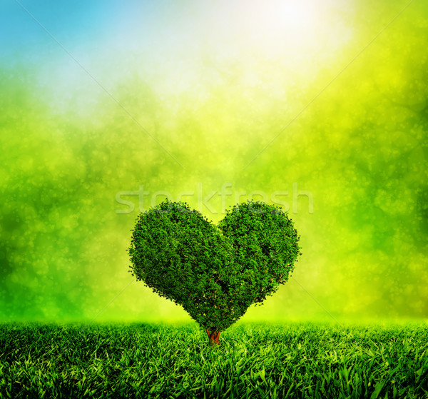 Heart shaped tree growing on green grass. Love, nature, environment Stock photo © photocreo