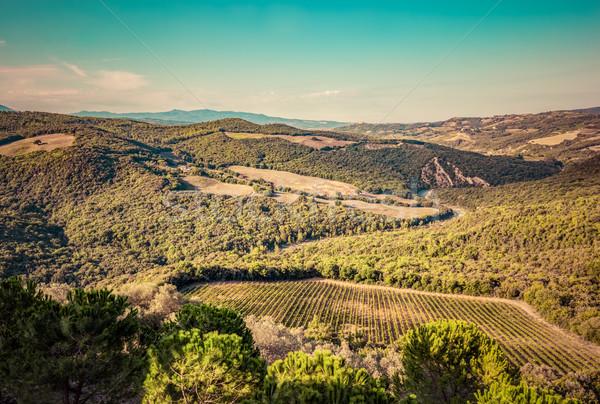 Toscana paisagem verde Itália Foto stock © photocreo