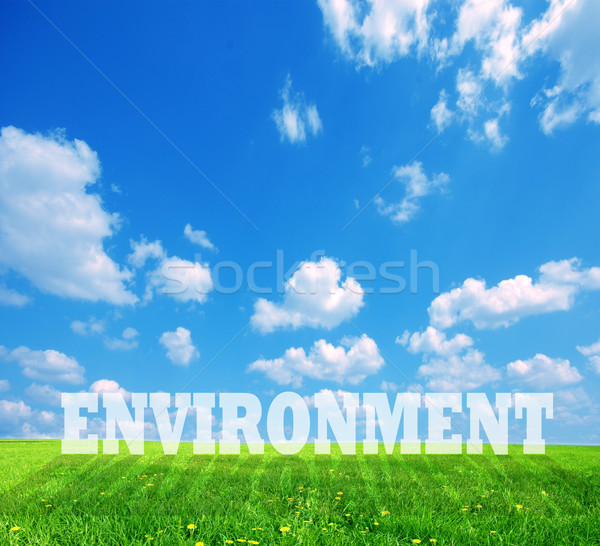 Environment caption on green land Stock photo © photocreo