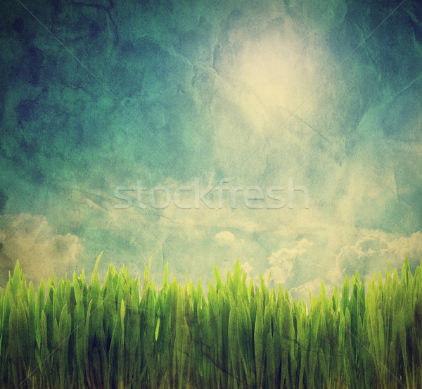 Vintage, retro image of nature landscape. Grunge canvas texture Stock photo © photocreo
