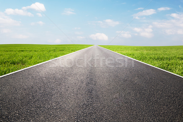 Long empty straight road, highway. Travel Stock photo © photocreo