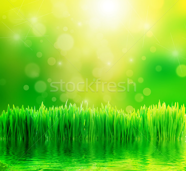 Green nature background with fresh grass and water Stock photo © photocreo