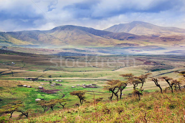 Savannah landscape in Tanzania, Africa Stock photo © photocreo