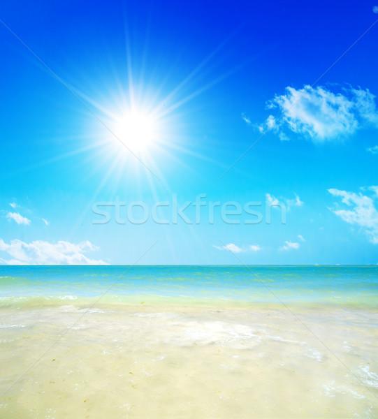 Tropikalnej plaży słoneczny Błękitne niebo niebo ryb wygaśnięcia Zdjęcia stock © photocreo