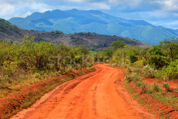 Rouge sol route savane ouest Kenya Photo stock © photocreo
