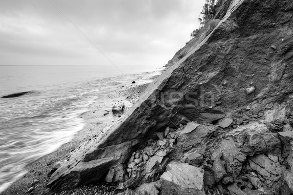 Wild beach, sea and cliff erosion in winter. Black and white Stock photo © photocreo