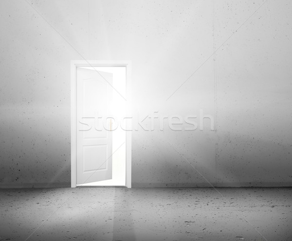 Open door to a new better world, the sun light shining through doorway Stock photo © photocreo