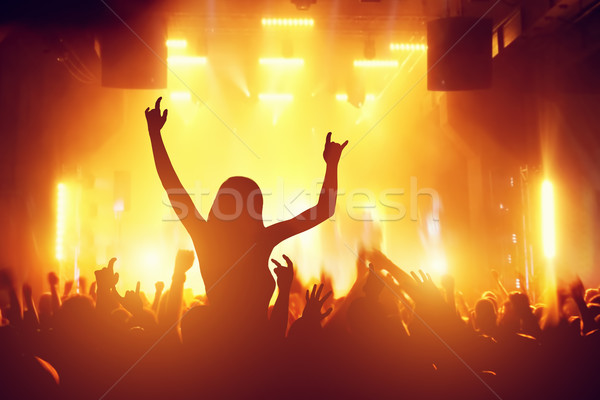 Concert, disco party. People having fun in night club Stock photo © photocreo