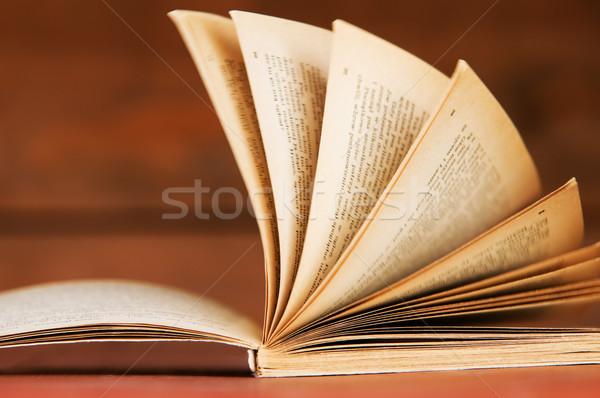 Libro aperto stile retrò legno istruzione concetti business Foto d'archivio © photocreo