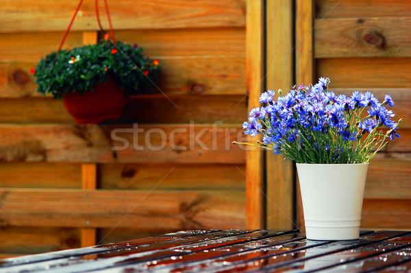 Açık dizayn doğal ahşap mobilya çiçekler Stok fotoğraf © photocreo
