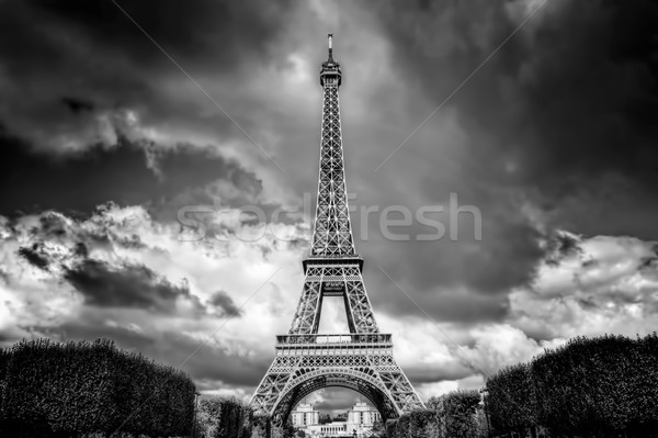Eiffel Tower seen from Champ de Mars park in Paris, France. Black and white Stock photo © photocreo