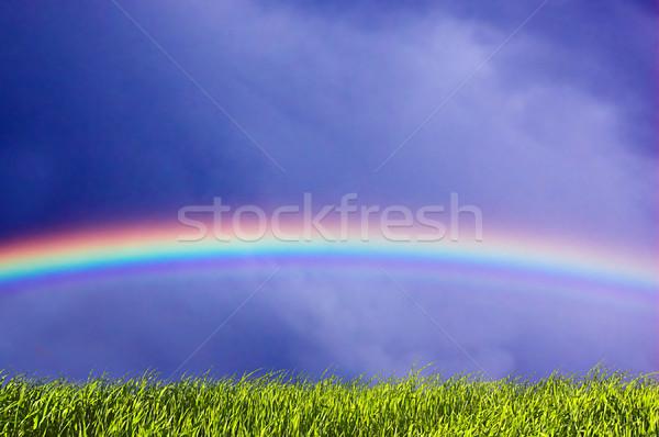 Vers gras hemel regenboog groen gras mooie Stockfoto © photocreo