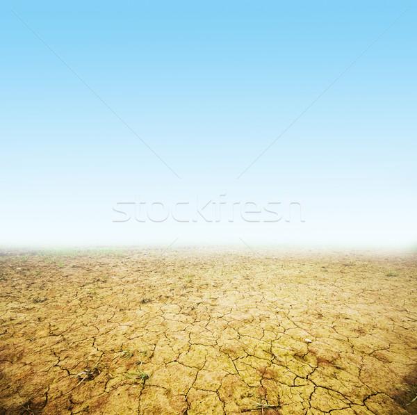 Cracked ground background Stock photo © photocreo