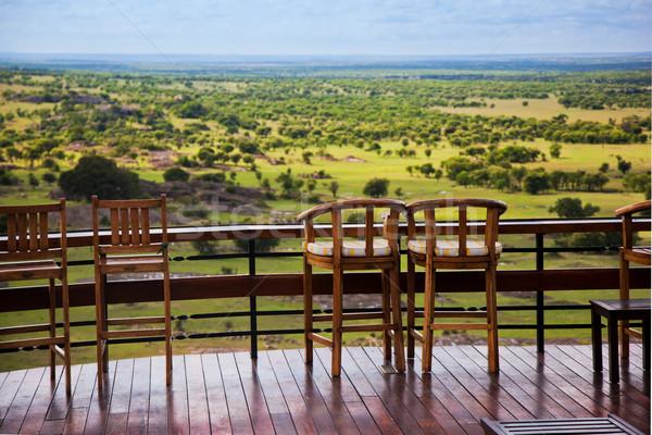 Székek terasz szavanna tájkép Serengeti Tanzánia Stock fotó © photocreo
