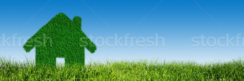 Verde ecológico casa inmobiliario hierba tierra Foto stock © photocreo