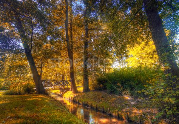 Autumn park Stock photo © photocreo