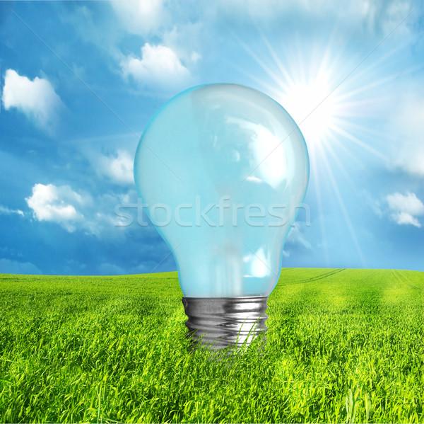 Groene energie gloeilamp natuur wereld achtergrond aarde Stockfoto © photocreo