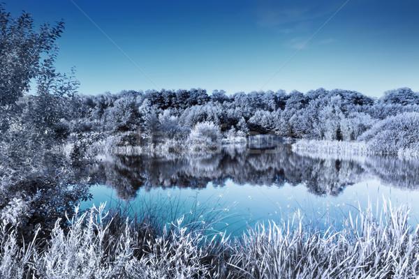 湖 森林 赤外 効果 冷たい 冬 ストックフォト © photocreo