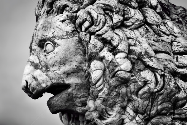 Starożytnych rzeźba lew Florencja Włochy stylu Zdjęcia stock © photocreo