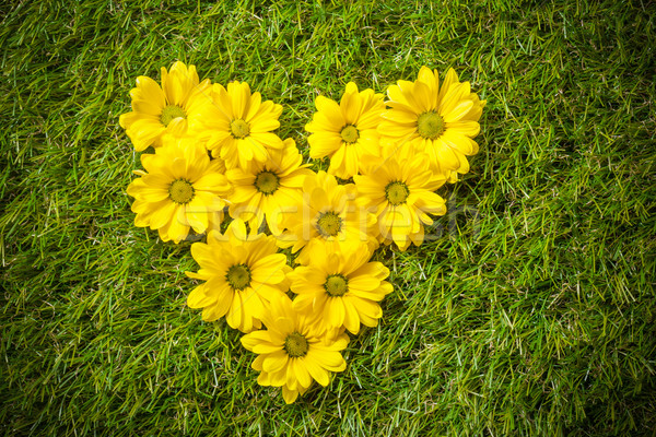 Fresh spring flowers in heart shape on grass. Stock photo © photocreo