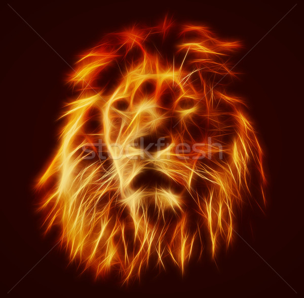 Abstract, artistic lion portrait. Fire flames fur, black background Stock photo © photocreo