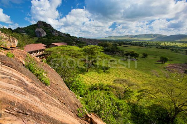 Toeristische savanne Tanzania afrika landschap serengeti Stockfoto © photocreo