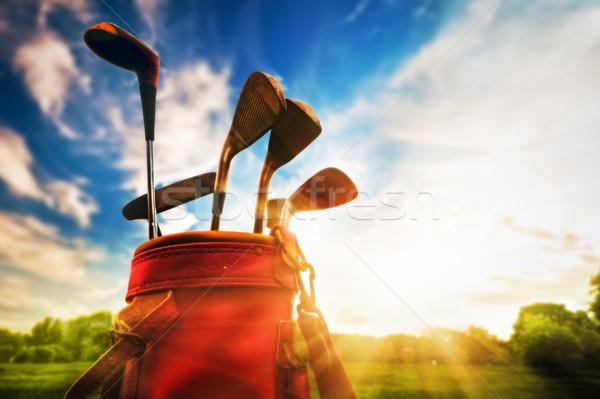 гольф оборудование профессиональных гольф-клубов закат кожа Сток-фото © photocreo