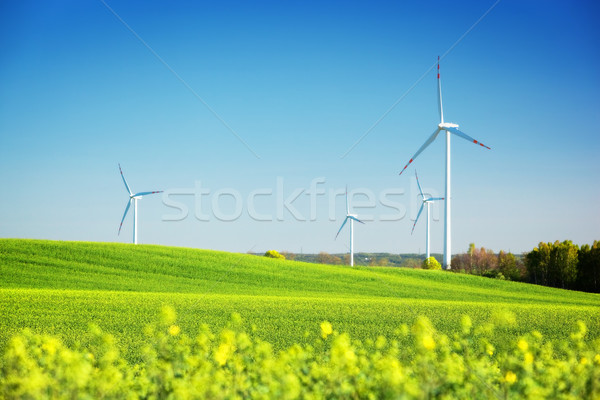 Wind turbines on spring field. Alternative, clean and natural energy Stock photo © photocreo
