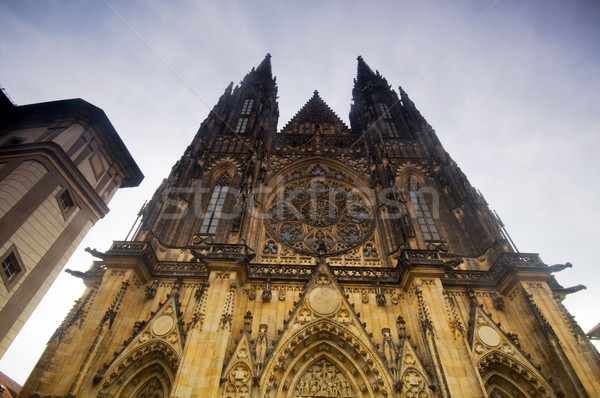 Prag katedral görmek Bina şehir kentsel Stok fotoğraf © photocreo