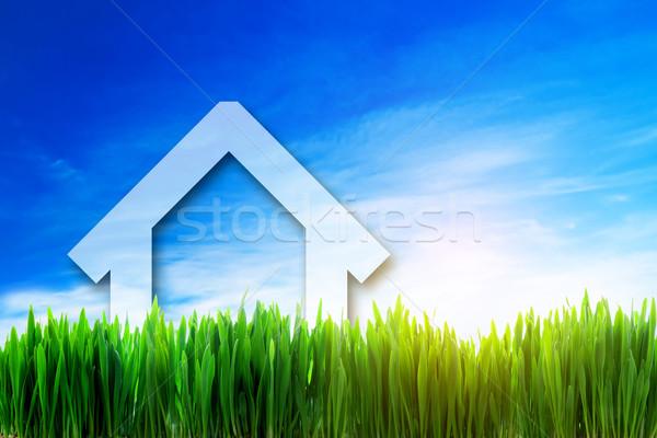 Foto stock: Perspectiva · verde · soleado · campo · eco