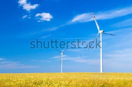 Photo stock: Paysage · environnement · source · énergie · printemps