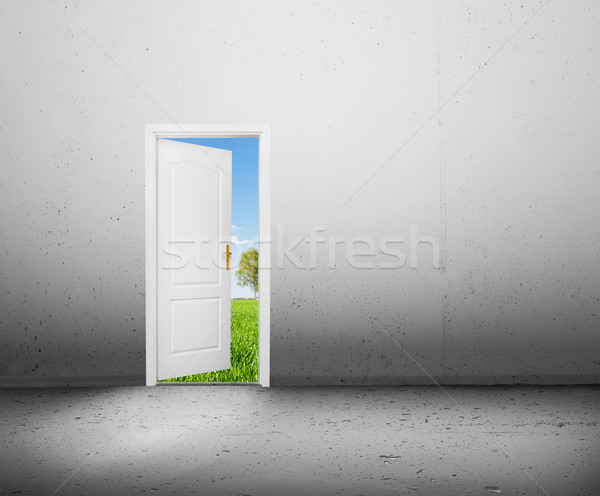 Open door to a new world, the green summer landscape. Conceptual Stock photo © photocreo