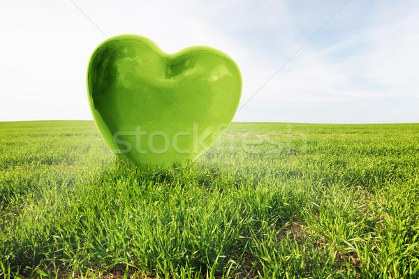 Vert coeur herbeux domaine amour saine Photo stock © photocreo