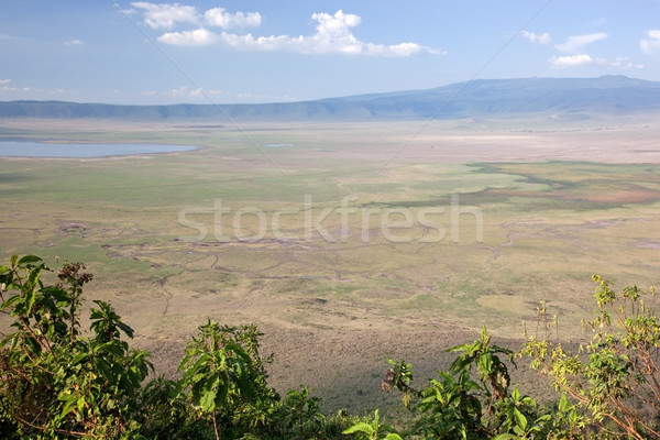 Ngorongoro crater in Tanzania, Africa. Panorama Stock photo © photocreo