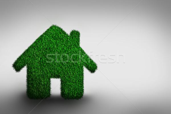 Green, eco friendly house concept. Stock photo © photocreo