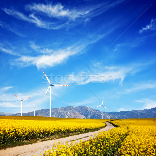 Wind turbines on spring field. Alternative, clean and natural source of energy Stock photo © photocreo