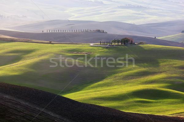 Tuscany landscape at sunrise. Tuscan farm house, vineyard, green hills. Stock photo © photocreo