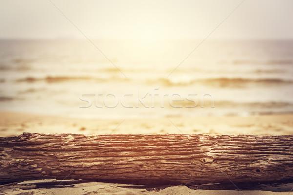 Tree trunk lying on the beach. Ocean background, sun shining. Stock photo © photocreo