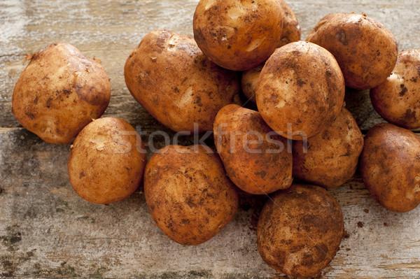 Farm fresh or home grown rustic potatoes Stock photo © photohome