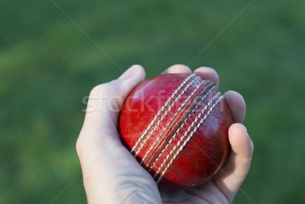 стороны крикет мяча красный зеленая трава Сток-фото © photohome