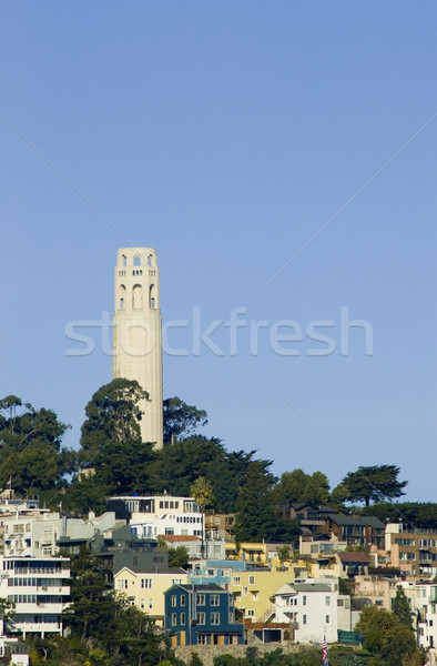 Coit Tower Stock photo © photohome