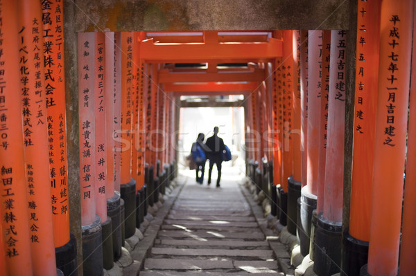 Torii Gate Tunnel Stock photo © photohome