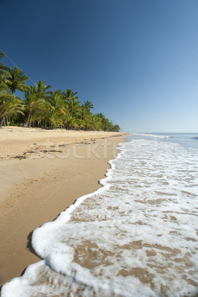 Tranquil summer day on Mission Beach, Queensland Stock photo © photohome