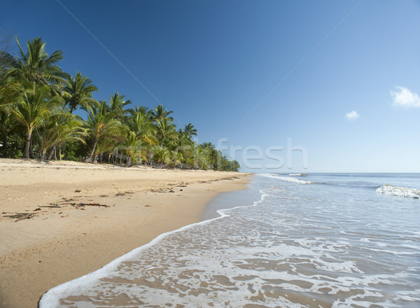 Stock photo: Idyllic tropical getaway at Mission Beach