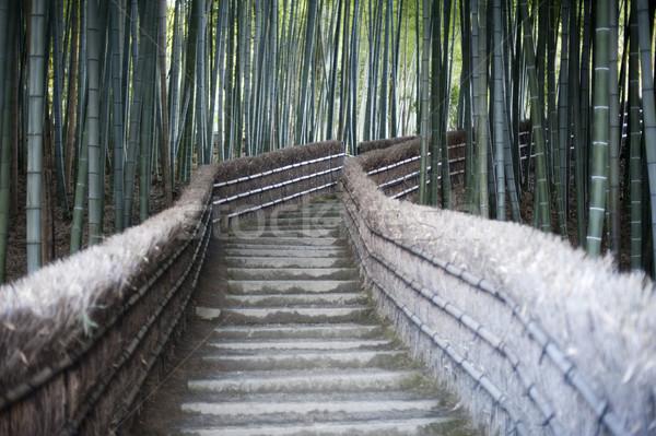 Bambusz lépcső vezető templom Kiotó Japán Stock fotó © photohome