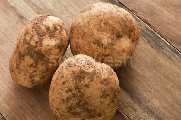 Unwashed fresh farm potatoes Stock photo © photohome